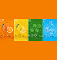 juicy and fresh fruit orange lemon mint ice water vector image vector image