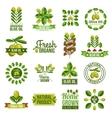 Organic Natural Olive Oil Label Set vector image