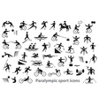 Paralympic sport icons vector image