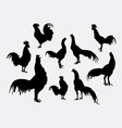 Rooster and cock pose silhouettes vector image