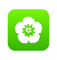 rose of sharon korean flower icon digital green vector image vector image