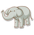 sticker design with cute elephant isolated vector image vector image