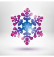 Abstract Christmas snowflake vector image