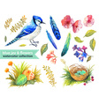 Blue jay and flowers collection vector image vector image