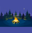 bonfire in night spruce forest vector image