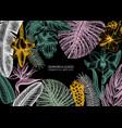 botanical summer design frame with tropical vector image