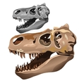Fossilized skull of ancient animal vector image vector image