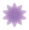lotus flower lilac vector image