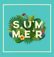 summer flyer vector image vector image