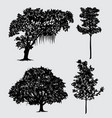 tree nature silhouette vector image