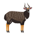 african antelope cartoon icon vector image vector image
