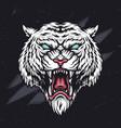 ferocious angry cruel tiger head vector image vector image
