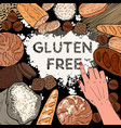 gluten free background with flour breads vector image vector image