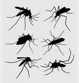 mosquito insect animal silhouette vector image vector image