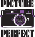 Picture Perfect vector image vector image