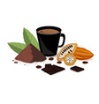 bright banner with cocoa drink cocoa powder vector image vector image