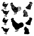 chicken siluet3 vector image