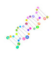 colorful detailed dna genetic sign on white vector image vector image