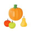 fresh orange pumpkin seasonal apple pear fruits vector image vector image