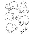 hand drawing cute bear with a lot of variation vector image vector image