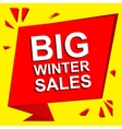 Sale poster with BIG WINTER SALE text Advertising