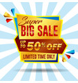 set realistic big sale banner vector image