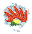 shrimp with rosemary and lemon on ice cubes vector image vector image