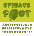 Spinach font Useful Herbs alphabet Green lettuce vector image vector image