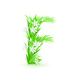 spring flowers alphabet f vector image vector image