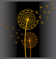 wallpaper with two colorful dandelion blowing vector image vector image