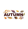 watercolor banner with autumn leaves vector image