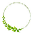 wreath fresh green leaves vector image