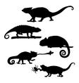 Chameleon set vector image vector image