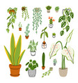 collection 18 different home plants vector image vector image