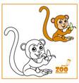 cute cartoon little monkey eating banana color vector image