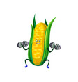 cute sportive funny corncob exercising with vector image