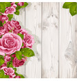 decorative background with romantic pink roses vector image vector image