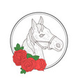 hand drawn horse head profile and red rose flowers vector image
