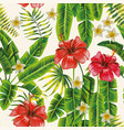 palm leaves and hibiscus plumeria flowers vector image vector image