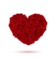 Red fur heart for Your Valentine design vector image vector image