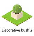 round bush icon isometric style vector image