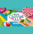 summer sale design with beach ball sunshade and vector image