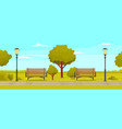 view park with wooden benches lamp posts vector image vector image