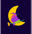 witch on broom is flying isolated halloween vector image vector image