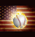baseball ball on flag vector image vector image