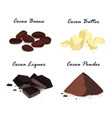 cocoa products cocoa beans cocoa butter cocoa vector image vector image