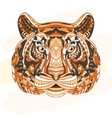 Detailed Patterned head of the tiger African vector image