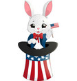 happy presidents day rabbit vector image vector image