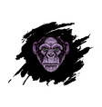 head gorilla with abstract background vector image vector image