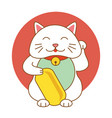 maneki neko lucky cat kitten icon flat web sign vector image vector image
